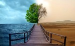 puente con dos visiones