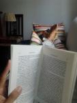 leyendo en ss